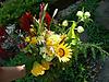 Flowers2009_4