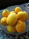 Lemons_2012_2